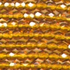 50 4mm Amber Faceted